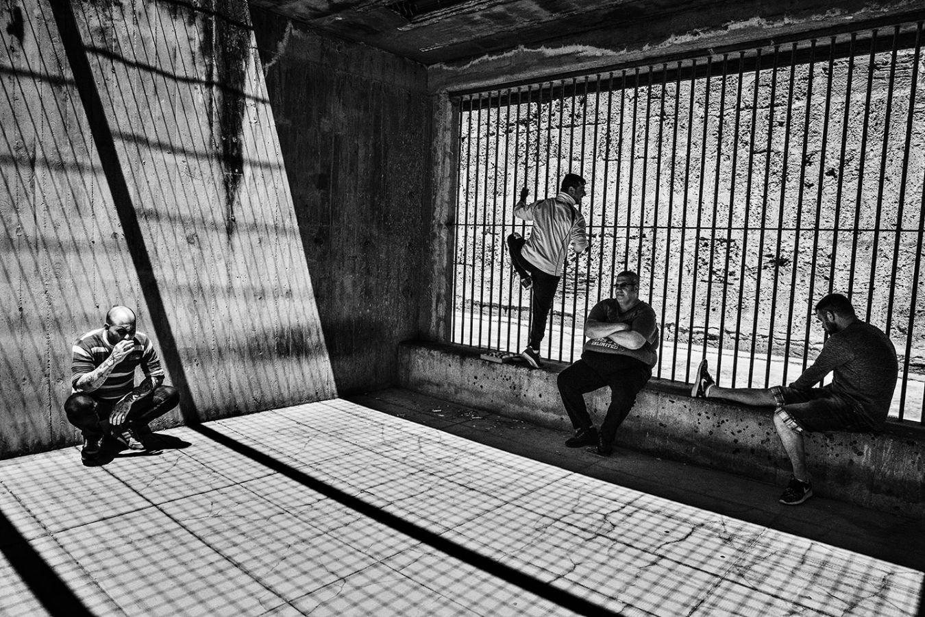 Птицы в клетке в тюрьме Уччардоне в Палермо, 4 декабря 2019 г.