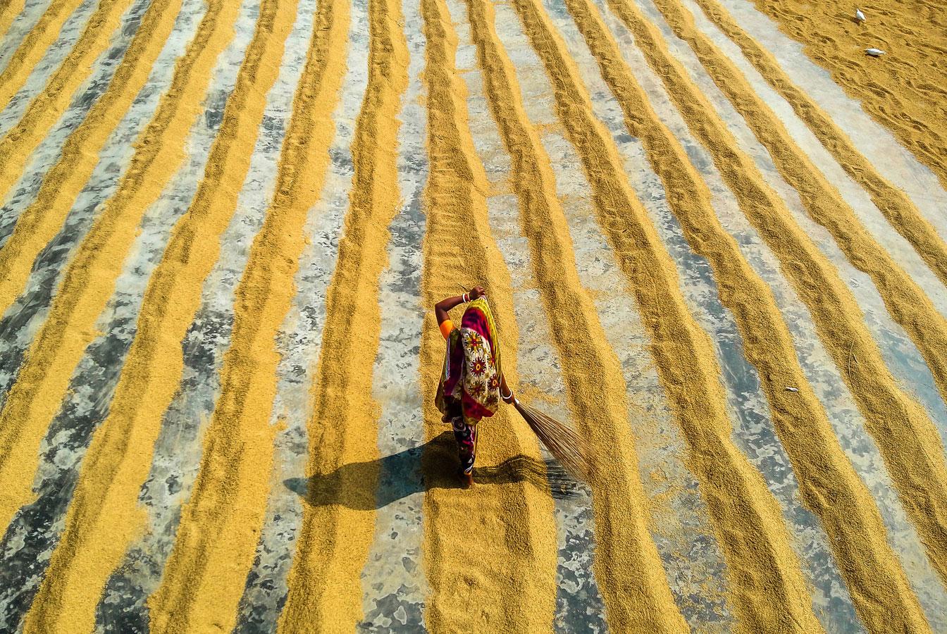 Метла, © Эшануль Сиддик Аранья / Ehsanul Siddiq Aranya, Бангладеш, 1 место в номинации «Мобильная фотография», Фотоконкурс 35AWARDS — 100 Best Photos