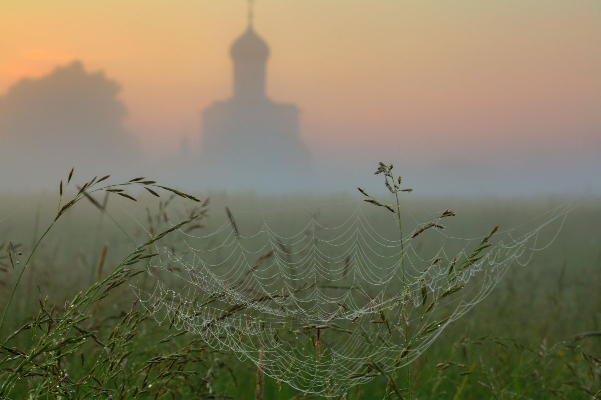 Дмитрий Бырлов «Поймать рассвет», Боголюбовский луг, 2021