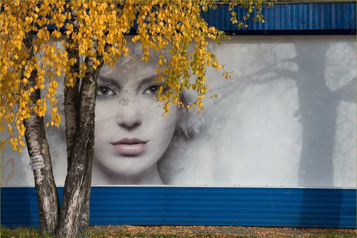Я заметил, фото А. Овсова