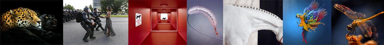 Фотоконкурс 1x Photo Awards