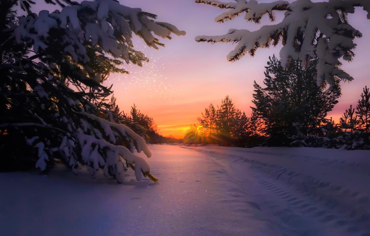 Автор Джамалов Руслан. Название «Северный закат»