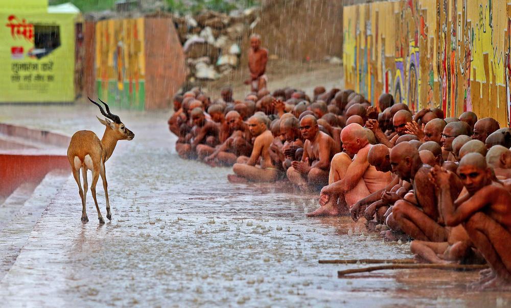 © Тара Чанд Гавария, Индия, 1 место в номинации «Репортажная фотография», Одиночные работы, Фотоконкурс 35AWARDS — 100 Best Photos