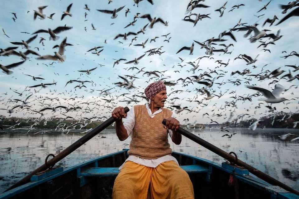 Человек, который кормит перелетных птиц, Саураб Наранг | Германия