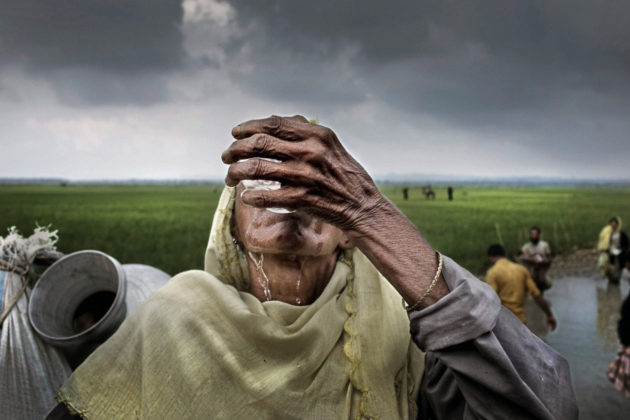 К М Асад / K M Asad, Победитель конкурса, ноябрь 2017 года, Фотоконкурс Allard Prize