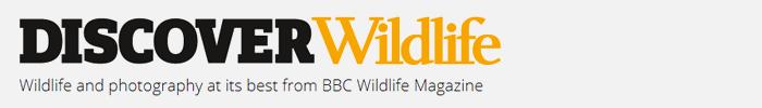 Фотоконкурс BBC Wildlife
