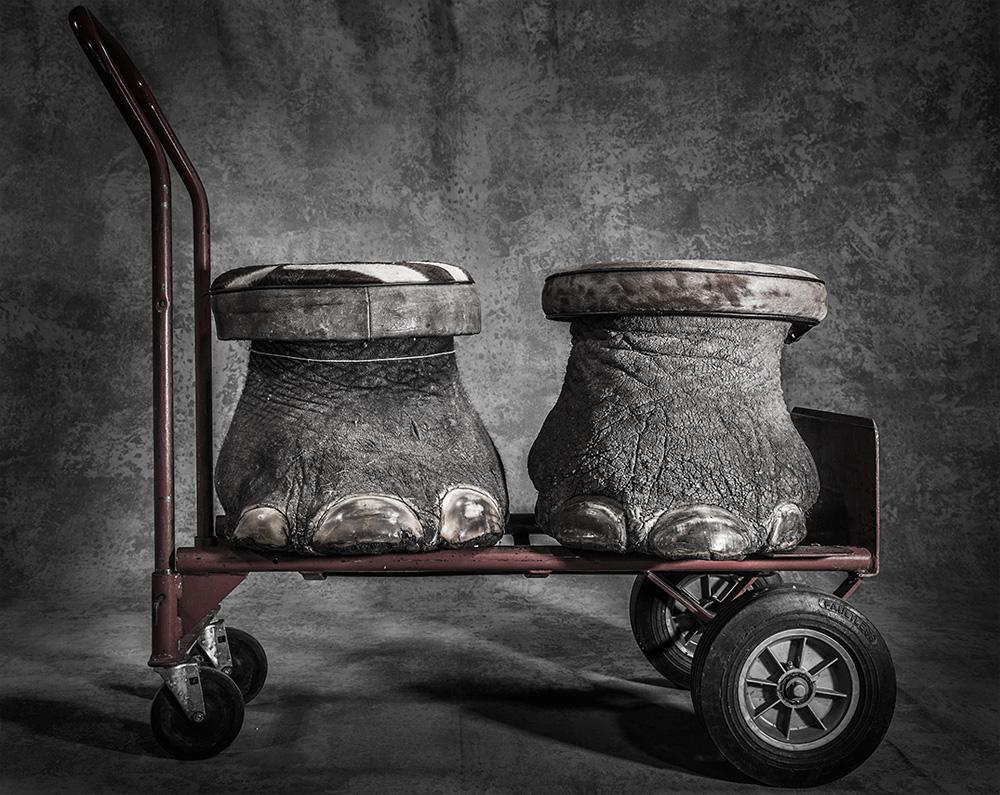 Конфискат, © Бритта Ящински / Britta Jaschinski, Великобритания, Гран-при конкурса, Фотоконкурс BigPicture