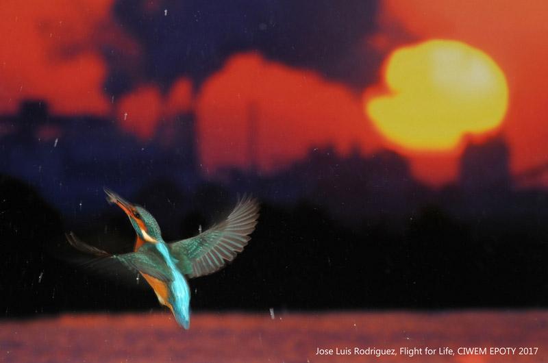 Хосе Луис Родригес / Jose Luis Rodriguez, Победитель премии «Изменение климата», Фотоконкурс Environmental Photographer of the Year | CIWEM