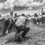 Маркос Родригес, Испания / Marcos Rodríguez, Spain, Победитель в категории «Репортаж / Фотожурналистика», Фотоконкурс «Европейский фотограф года»