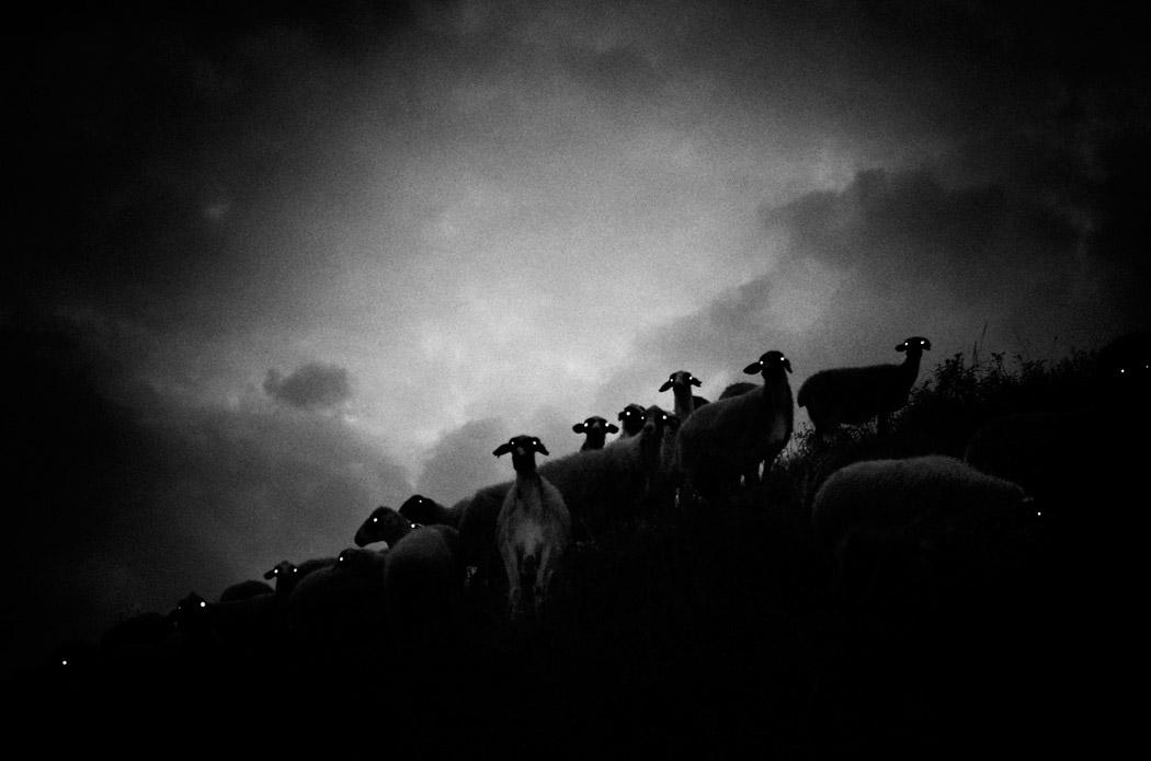 Ставрос Стаматиу / Stavros Stamatiou, Лучшая чёрно-белая фотография, Фотоконкурс Gomma Photography Grant 2017