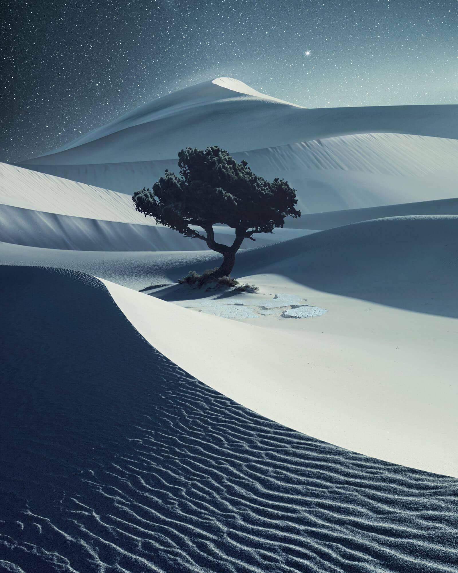 Бенджамин Эверетт, США / Benjamin Everett, USA, Победитель категории «Пейзаж», Фотоконкурс Hasselblad Masters