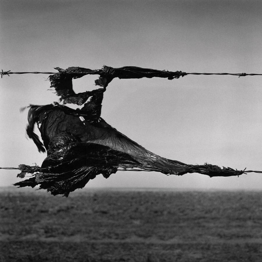 Уэс Белл, Канада / Wes Bell, Canada, Бронзовая премия, Фотоконкурс RPS International Photography Exhibition (IPE)