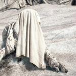 Ферц Ральф Эдвард, Швейцария / Fierz Ralph Edward, Switzerland, Фотограф года в категории «Природа», Фотоконкурс International Photographer of the Year