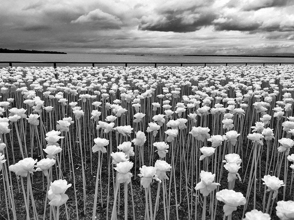 Sidney Po, Филиппины, 1-е место в категории «Цветы», Фотоконкурс iPhone Photography Awards