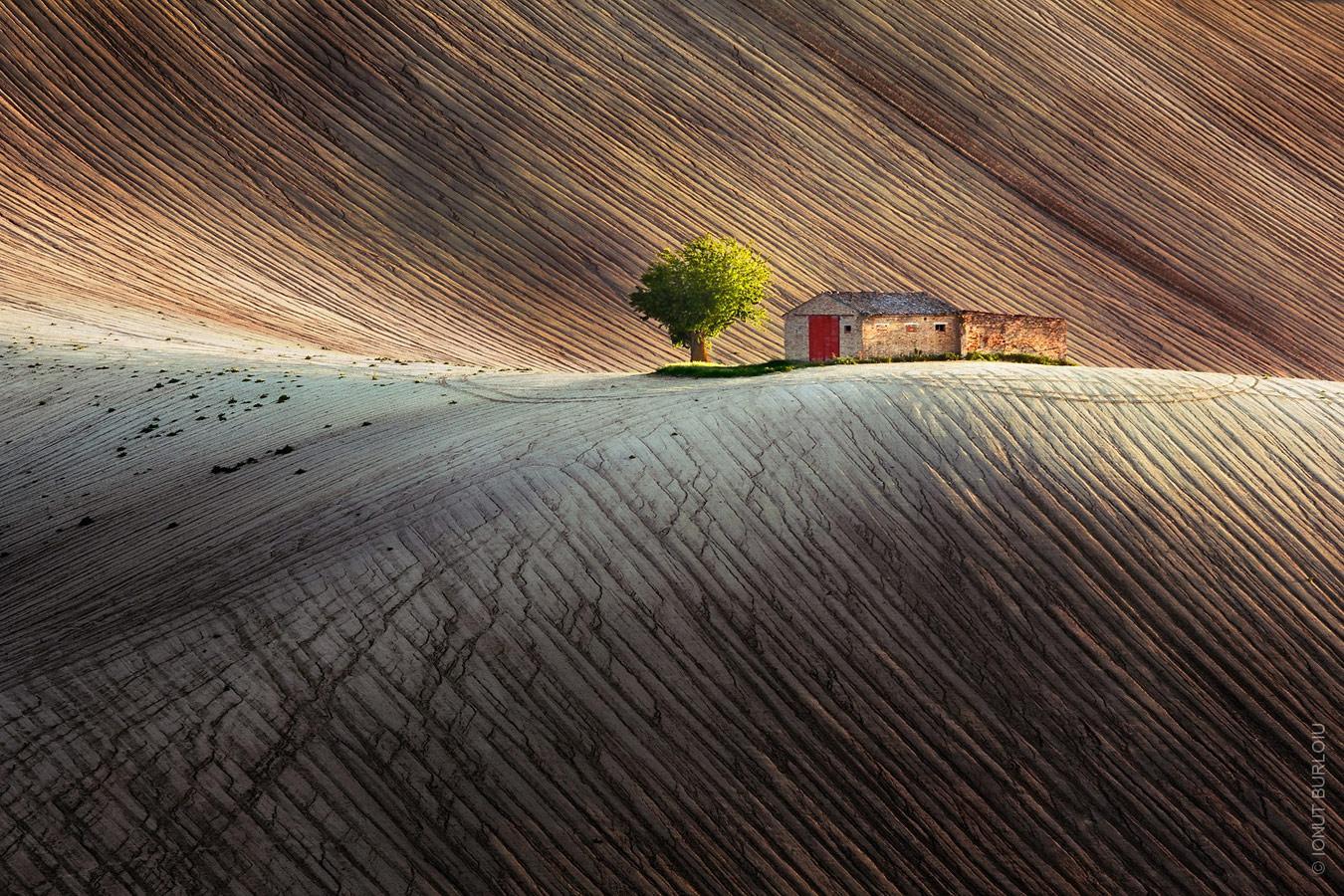 Душа Земли, © Ионут Бурлоу / Ionut Burloiu, Глобальный победитель, Фотоконкурс Metro Photo Challenge