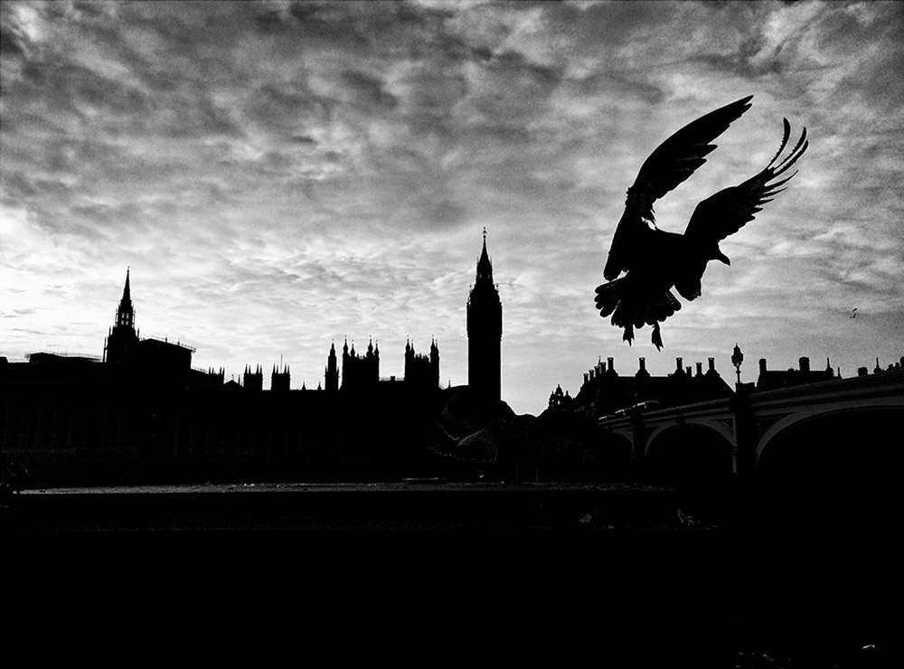 Мишель Джувет / Michel Juvet, Победитель в категории «Темнота», Фотоконкурс Mobile Photography Awards