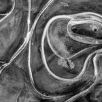 Билл Диксон, США / Bill Dixon, USA, Победитель в категории «Абстракция» (серия), Фотоконкурс MonoVisions