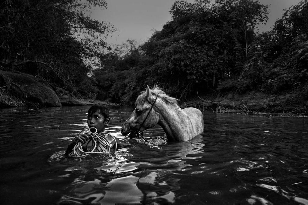 Дети-жокеи, © Ален Шредер / Alain Schroeder, Бельгия, Победитель категории «Редакционная: Фоторепортаж / Рассказ», Фотоконкурс ND Awards Photo Contest