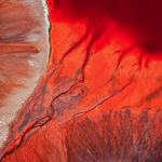 Кровоточащие слезы, © Юи Сан / Yi Sun, Великобритания, ND Природный фотограф года – 2017, Фотоконкурс ND Awards Photo Contest