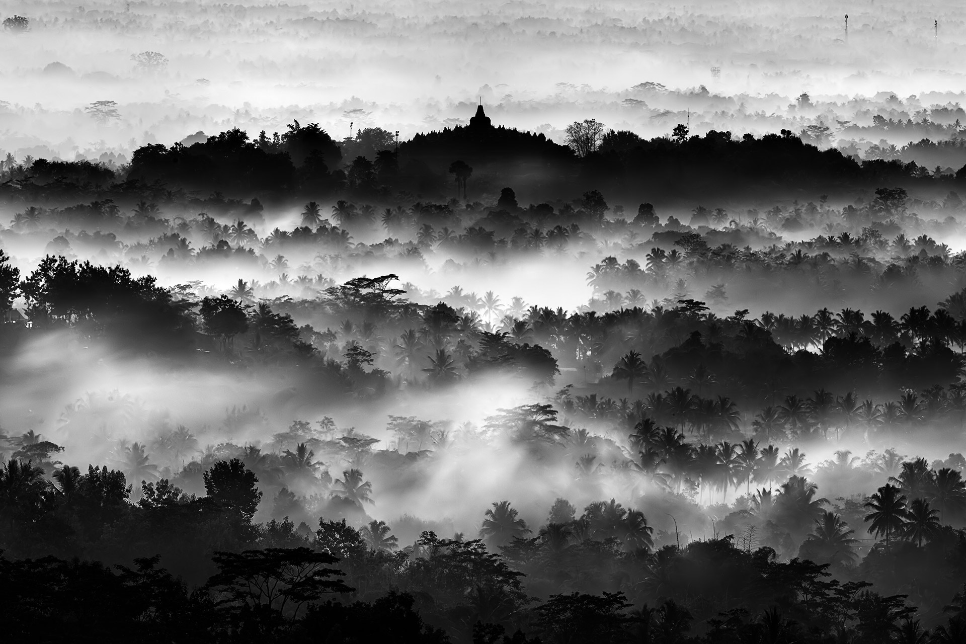 Ханди Лаксоно / Handi Laksono, Индонезия, Главный приз, Фотоконкурс «Лучшая природная фотография Азии» — Nature's Best Photography Asia