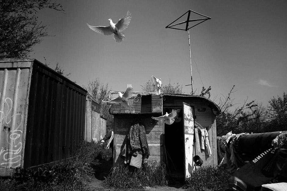 Кристалл, Россия / Kristall, Russia, Победитель премии «Следующее поколение» (один кадр), Фотоконкурс Nikon Photo Contest 2016–2017