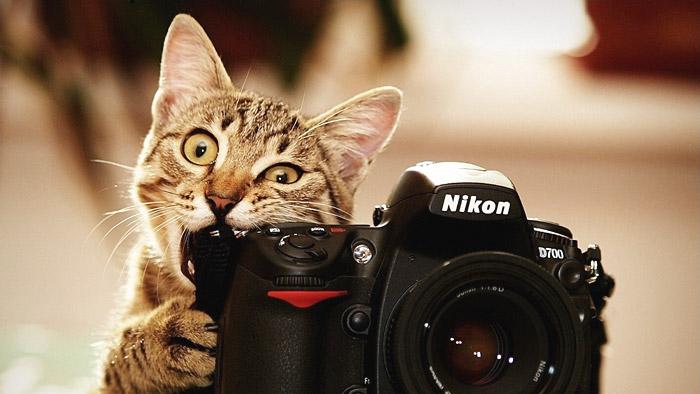 Фотоконкурс Nikon «Я в сердце изображения»