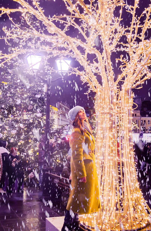 Анисимова Катерина / Рождественский снегопад, Выбор «Вечерней Москвы», Фотоконкурс «Планета Москва»