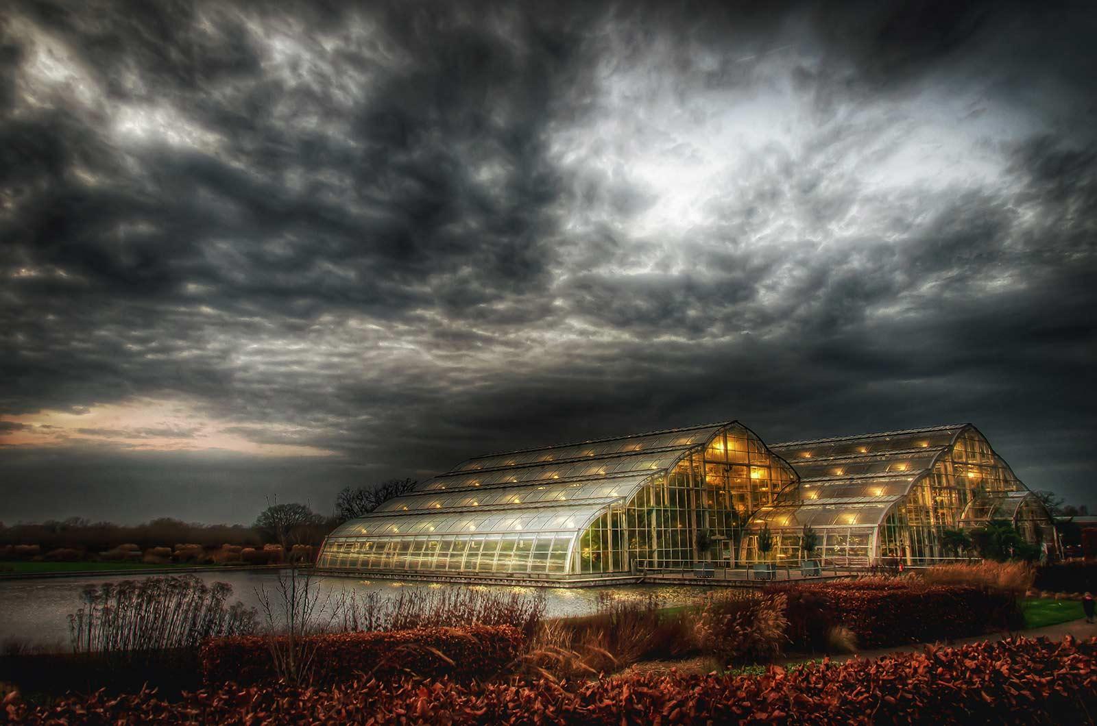 Стивен Рид / Stephen Reed, Победитель в категории «Праздник сада», Фотоконкурс RHS Photographic Competition