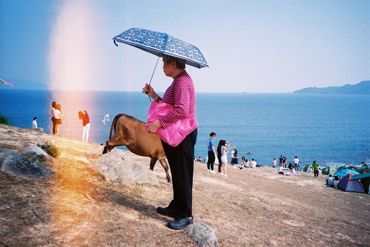 Скрывать и искать: женщина и корова, © Ромен Барт / Romain Barthe (Гонконг), Фотоконкурс Renaissance Photography Prize