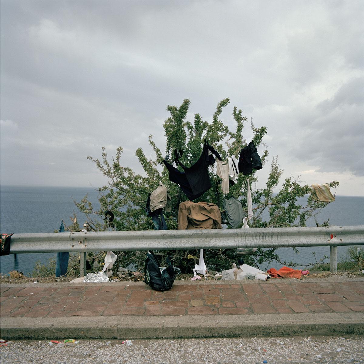 Дерево жизни, © Деметрис Койлалус / Demetris Koilalous (Греция), Фотоконкурс Renaissance Photography Prize