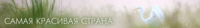 Фотоконкурс Русского географического общества «Самая красивая страна»