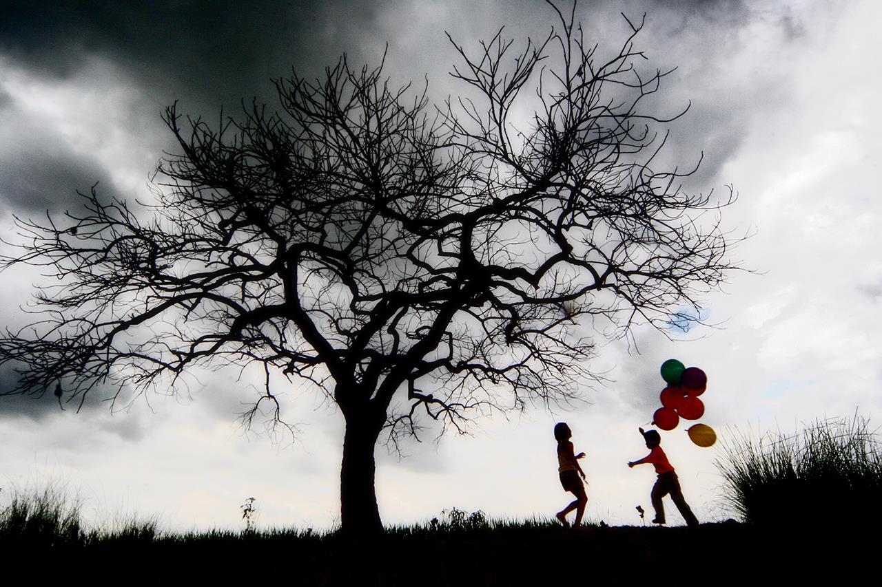Красивая жизнь, Эдвин Лойола / Edwin Loyola, Северная Хиллз, Калифорния, Фотоконкурс Santa Fe Photographic