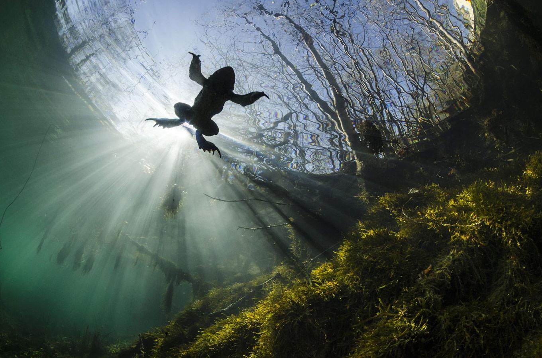 Янник Гугенхайм, Франция / Yannick Gouguenheim, France, 3-е место в категории «Красота природы», Фотоконкурс Siena International Photography Awards