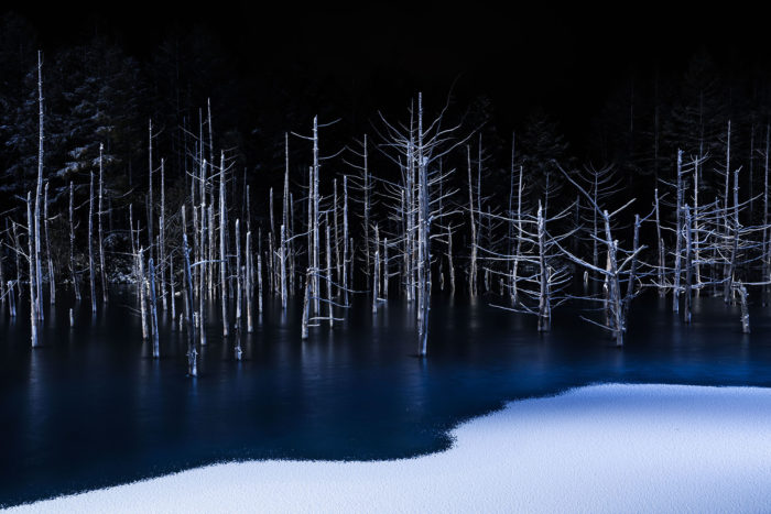 Хироши Танита, Япония / Hiroshi Tanita, Japan, Победитель в категории «Природа» (открытый конкурс), Фотоконкурс Sony World Photography Awards 2017