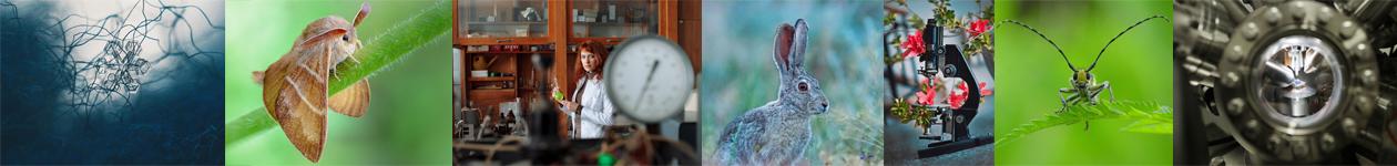 Фотоконкурс «Стихии науки»