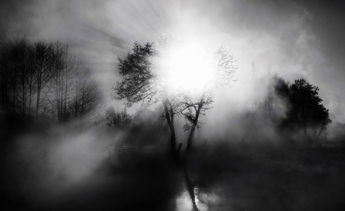 Митрофанова Елизавета, Река Пехорка, Финалист 2017 года в категории «Природа», Фотоконкурс «Стихии науки»