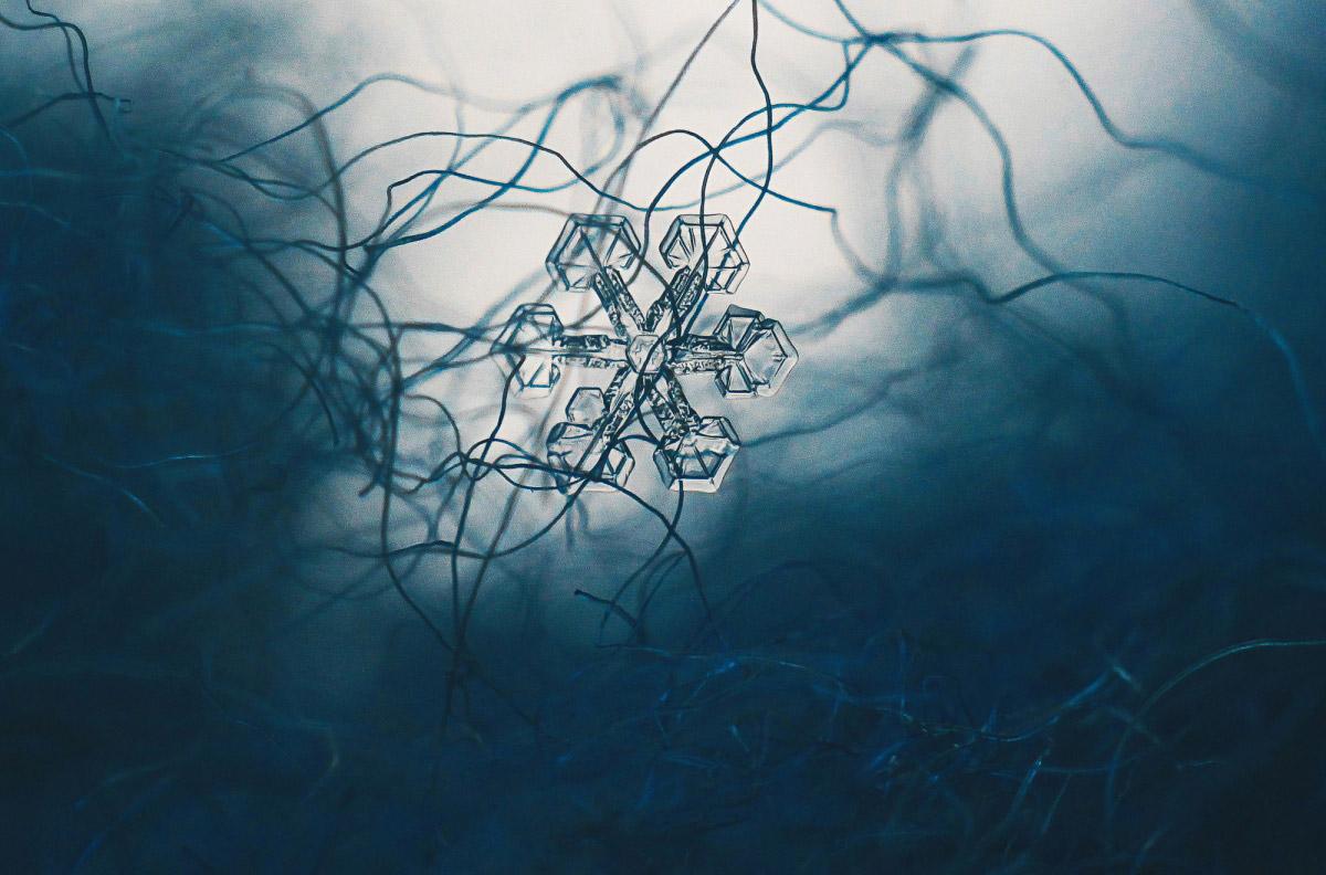 Фролова Евгения, Снежинка, Финалист 2017 года в номинации «Микрокосм», Фотоконкурс «Стихии науки»