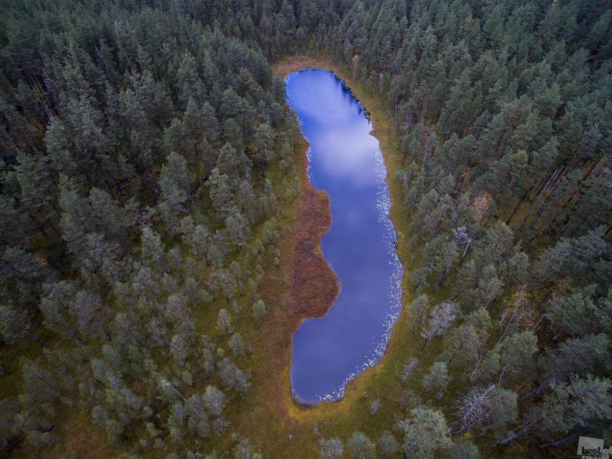 Озеро «Медвежий язык», Павел Богачев, Санкт-Петербург, The Best of Russia
