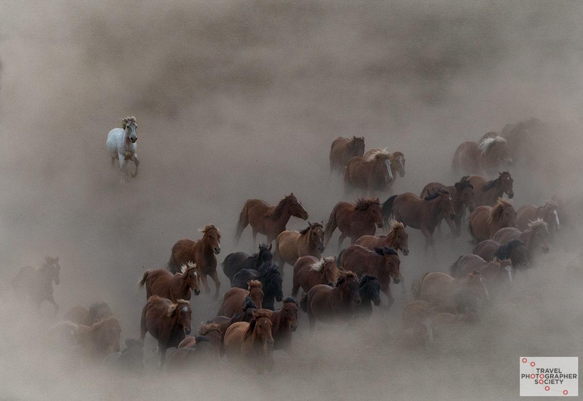 Триш Эдвардс / Trish Edwards, 3-е место, Фотоконкурс Travel Photographer Society Moments