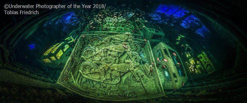 Тобиас Фридрих, Германия / Tobias Friedrich, Germany, Подводный фотограф года, Фотоконкурс «Подводный фотограф года 2018»
