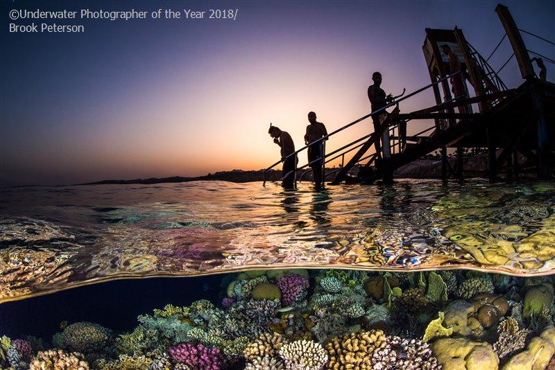 Брук Петерсон, США / Brook Peterson, USA, 3-е место в категории «Широкий угол», Фотоконкурс «Подводный фотограф года 2018»