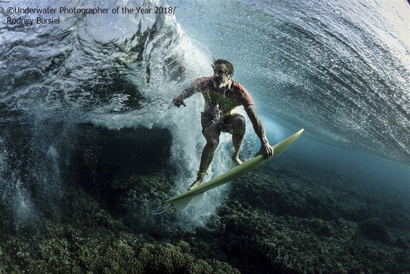 Родни Бурсиэль, США / Rodney Bursiel, USA, 3-е место в категории «Портрет», Фотоконкурс «Подводный фотограф года 2018»