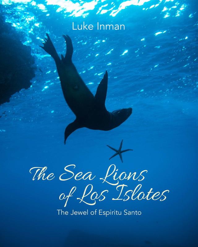 Люк Инман / Luke Inman, 2-е место в категории «Книга года», Фотоконкурс «Подводный фотограф года 2018»
