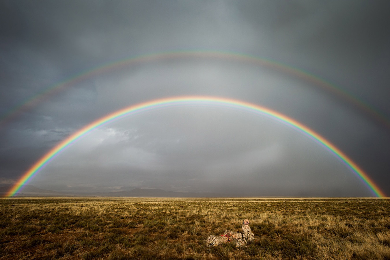 Ким Стивенс / Kim Stevens, Фотоконкурс RMetS / RPS Weather