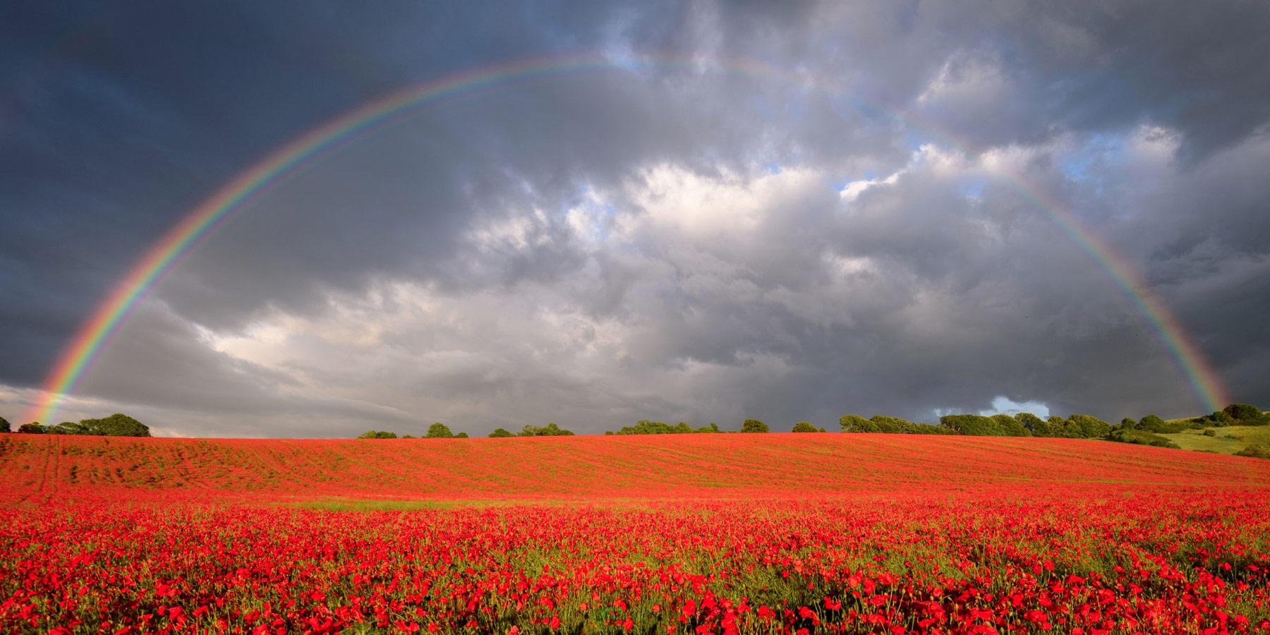 Сту Мич / Stu Meech, Фотоконкурс RMetS / RPS Weather