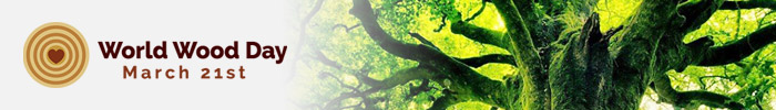 Фотоконкурс «Деревья и Жизнь»