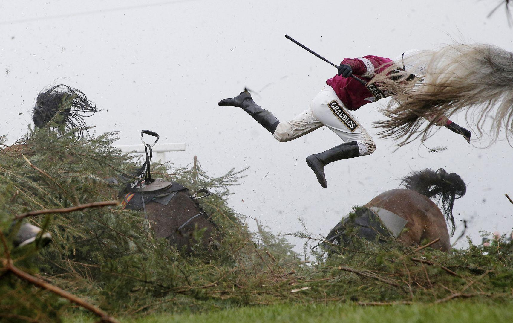 Великая национальная скачка, © Том Дженкинс, Великобритания, Фотоконкурс World Press Photo