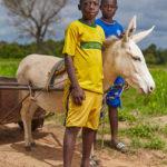 Бен Бонд Обири Асамоа / Ben Bond Obiri Asamoah, Финалист конкурса, Фотоконкурс ZEISS Photography Award