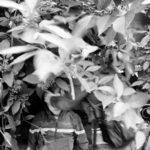 Номинация «Герой нашего времени», Связь, © Сергей Строителев, Конкурс репортажной фотографии «Памяти Александра Ефремова»