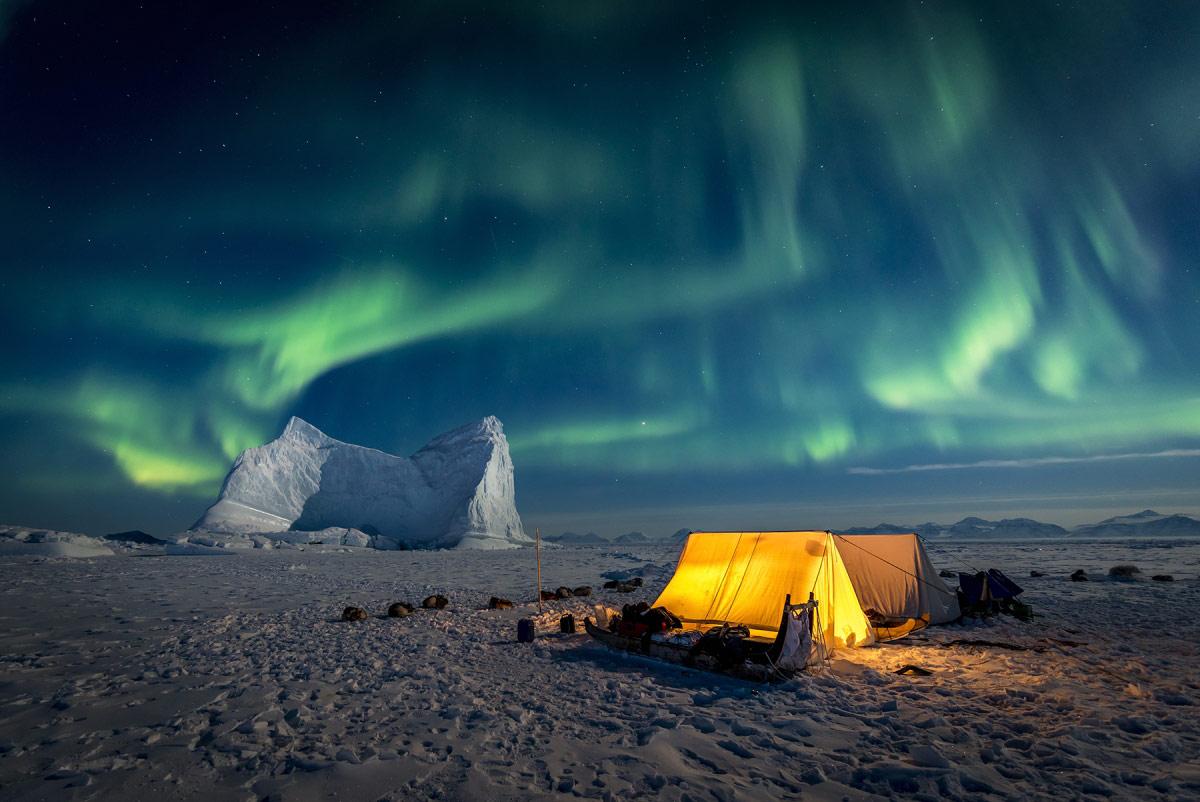 © Керри Кёппинг, Гран-при конкурса, Фотоконкурс «Арктическое биоразнообразие через объектив»